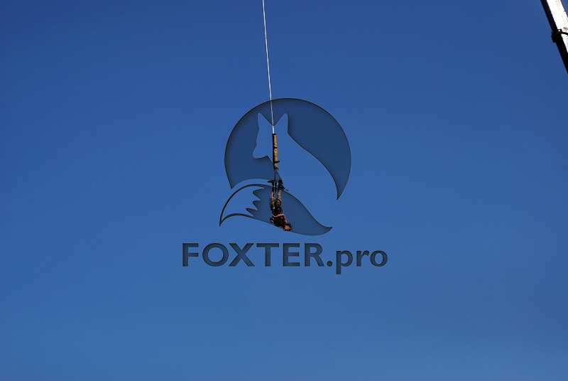 bungee_10